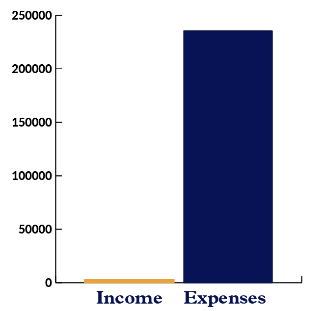 Bar graph showing Carpentries Income versus Expenses from Curriculum with expenses more than income