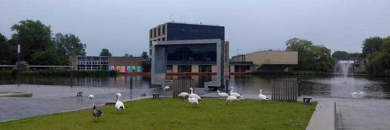 University of York Lake