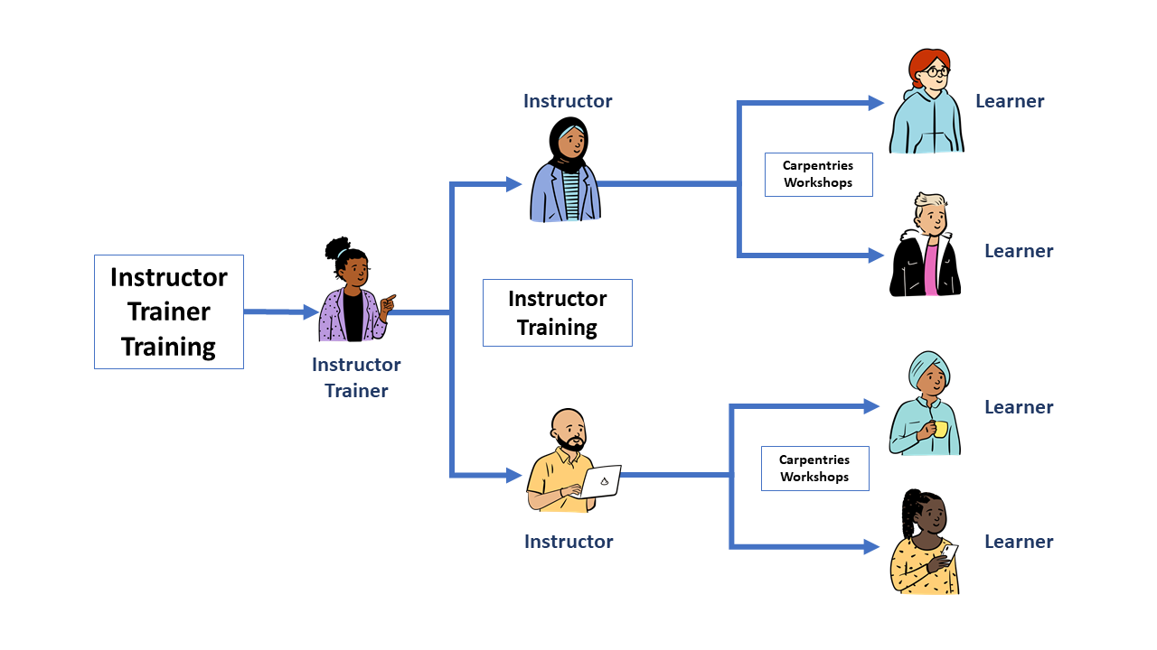 A diagram of our Instructor Training program. Instructor Trainers are trained through Instructor Trainer Training and themselves teach Instructor Training to new Instructors. New Instructors teach Carpentries Workshops to learners.